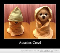 Assasins Creed –