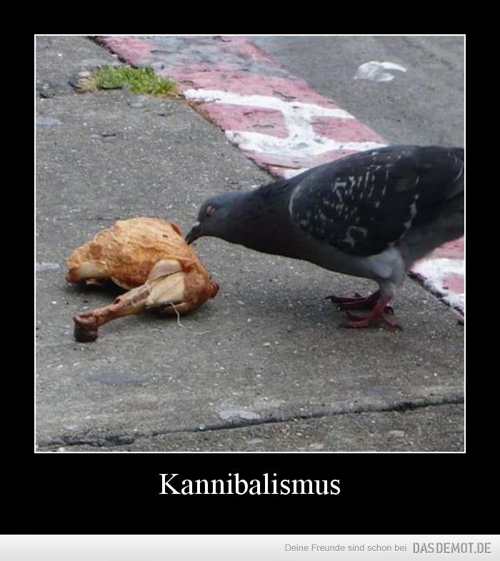 Kannibalismus Heute