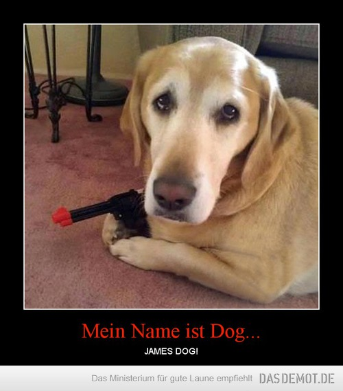 Mein Name ist Dog... – JAMES DOG!