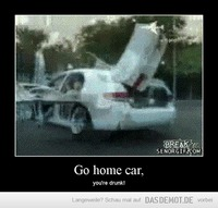 Go home car, – you're drunk!