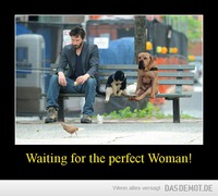 Waiting for the perfect Woman! –