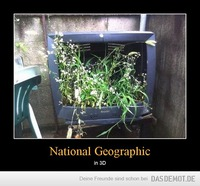 National Geographic – in 3D