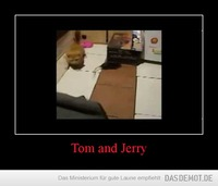 Tom and Jerry –